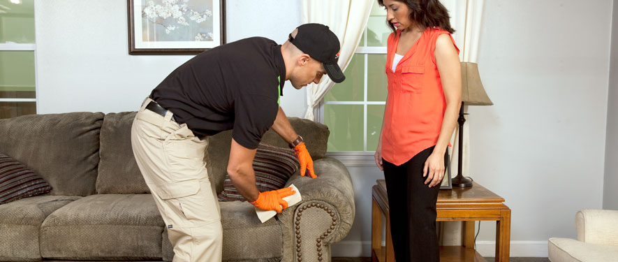 Marquette, MI carpet upholstery cleaning